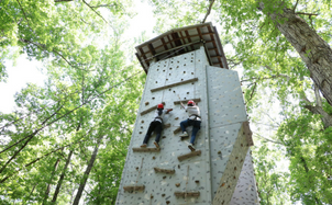 Rock climbing wall with climbers